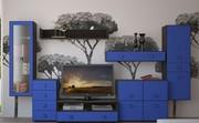 мебель на заказ от эконом класса до дорогих гарнитуров.качество!!!